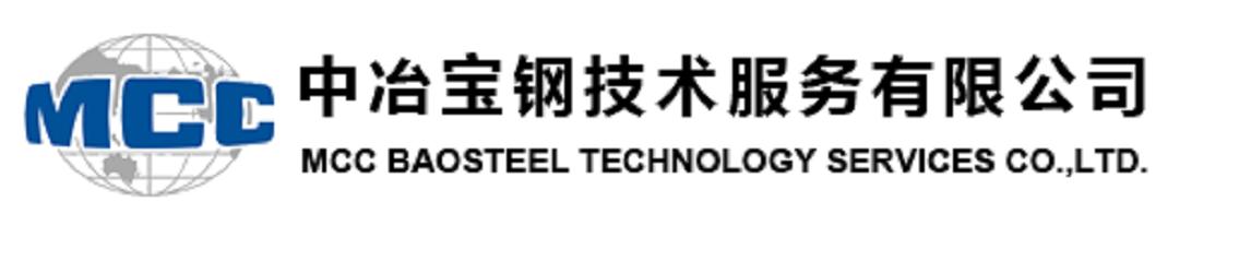 中冶宝钢技术服务有限公司第七分公司的企业标志
