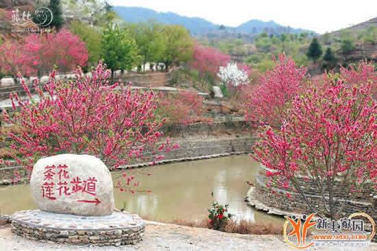 新丰县黄磜镇樱花峪及周边景区示意图