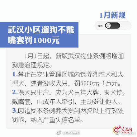 t01bf7f29fc88a955c6.jpg?size=440x440